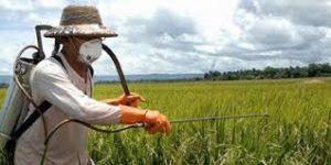 سم کشاورزی